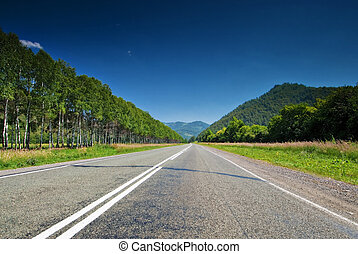 The direct road leading into the mountains.