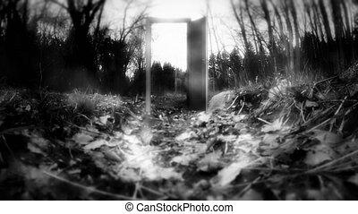 The door in the Woods, mystery. - The door in the Woods,...