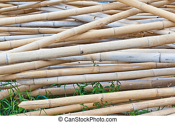 The dried bamboo
