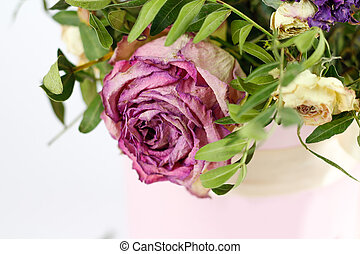 The dried flowers. Dead pink rose. Close up