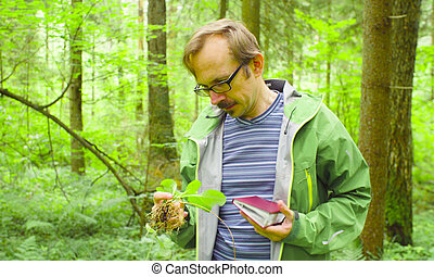 The ecologist in a forest examining plant