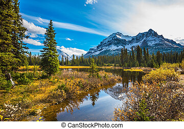 The ecotourism - Sunny day. Waterlogged valley in the snowy...