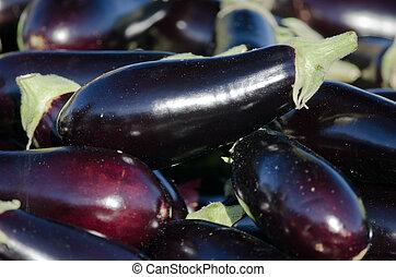 the eggplants
