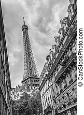 The Eiffel Tower in Paris, France in black and white colors...