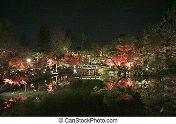 The Eikando temple night of fall season