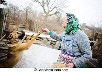 The elderly countrywoman plays with a puppy.