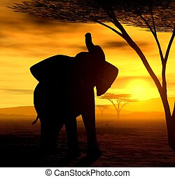 The Elephant - Illustration of an african elephant