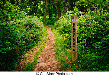 The Elkwallow Trail, in Shenandoah National Park, Virginia.