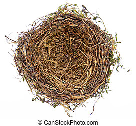 the empty nest of a bird. empty bird's nest. symbol image for building savings and house building