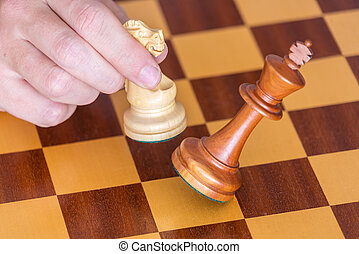 The end of a chess game a player wins king with knight