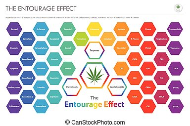 The Entourage Effect Overview horizontal business...