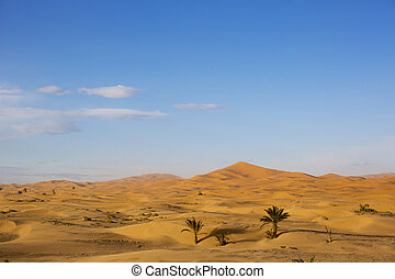 erg chebbi sand dunes - the erg chebbi sand dunes in...