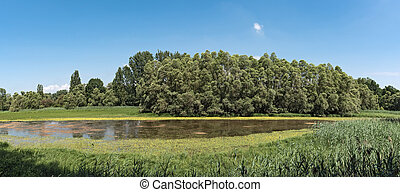 The European bird sanctuary and nature reserve Kuehkopf ...