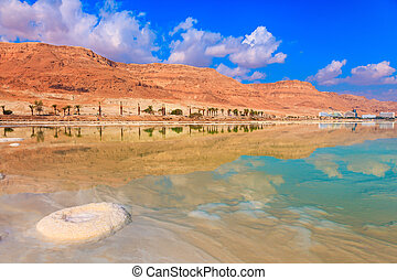 The Dead Sea - The evaporated salt forms freakish patterns...