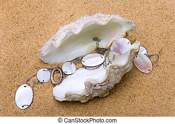 The exotic sea shell with a beads lies on sand