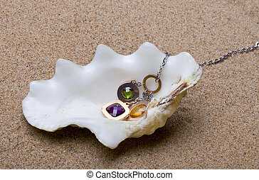 The exotic sea shell with beads lies on sand