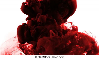 Slow drop of a clot of maroon ink on a white background