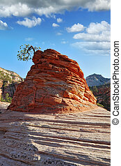 The famous rock of red sandstone