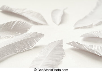 the feathers of a bird made of white paper on white background