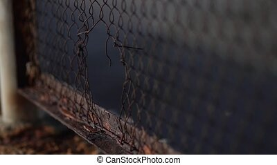 The fence mesh is covered with rust. Corrosion of metal. -...