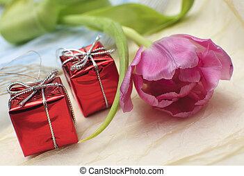 the Festive tulip