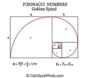The Fibonacci spiral