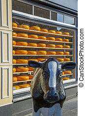 The figure of a cow on the background of the Famous Dutch cheese on the shelves in the store window