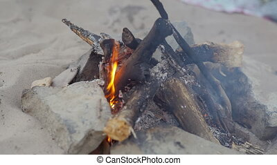 the fire burns on the beach, picnic