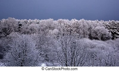 The first snow in Falkensee (Brandenburg) on November 12, Germany