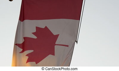 The flag of Canada waving on the pole