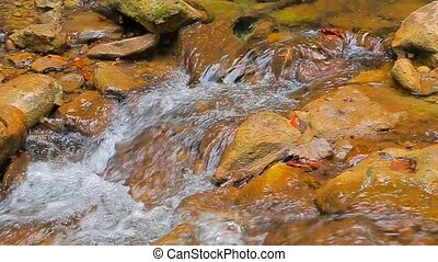 The flow of a mountain river over rocks