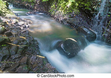 the flow of a waterfall containing mossy black stones