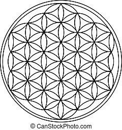 The Flower of Life is the modern name given to a geometrical...
