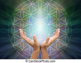 The Flower of Life Mandala