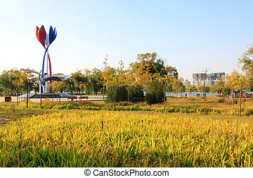 The flower shape sculpture in the Beihe park on October 23, 2012, in Luannan, Hebei, China. This is a local large scale sculpture of local origin, representing three of literary forms.