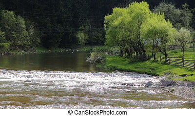 The flowing water of a tranquil river with tiny falls. Lavish green, idyllic landscape.