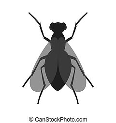 The fly icon. Black silhouette of housefly. Insect icon isolated. Vector illustration. Housefly logo in flat style