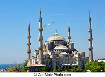 The flying seagull on a background of Sultan Ahmed Mosque in Istanbul, Turkey