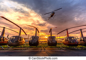 Bell 206 overflying a line of Robinson R44 helicopters.