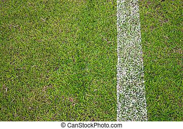 The football stadium on green