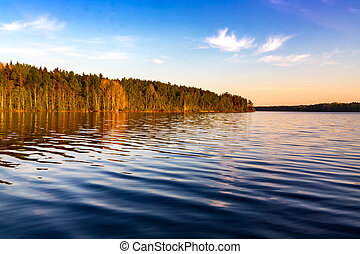 The forest on the shore of the lake in the sunset sun light