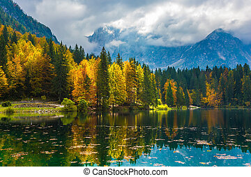 The forests are reflected in the water - The quiet lake in...