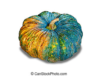 The Fresh pumpkin isolated on white background
