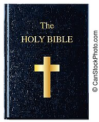 The front cover of The Holy Bible over a white background