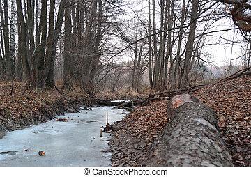 The frozen stream
