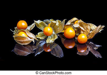 The fruit of physalis on a black mirror with reflection.