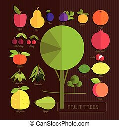 fruits of fruit trees - The fruits of fruit trees. Colorful...