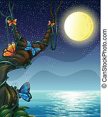 The full moon - Illustration of the full moon