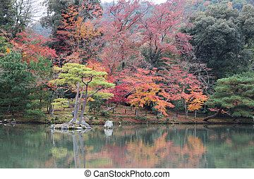 the garden autumn in kyoto at japan