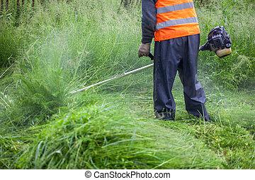 The gardener cutting grass by lawn mower